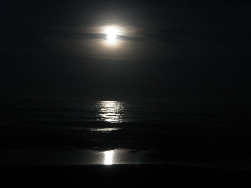 Notte 1