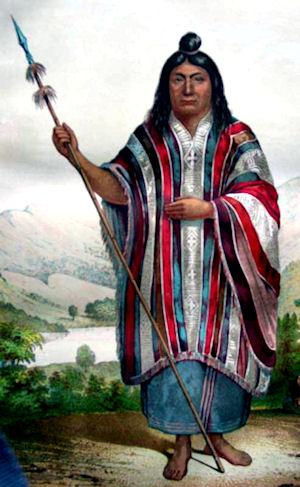 Araucanian-image1