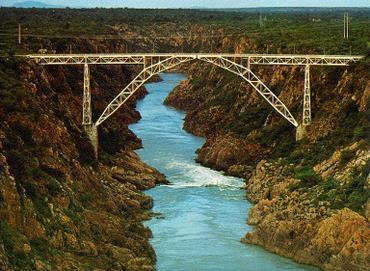 Ponte_veados4